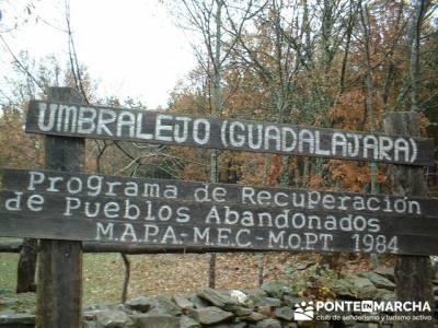 Umbralejo _ Pueblo de Guadalajara; sierra de irati; ruta por madrid